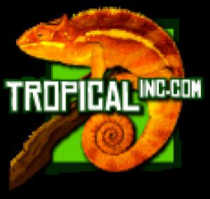 Tropical Inc.
