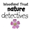 The Nature Detectives